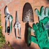 Attrezzi da giardino professionali: elenco strumenti indispensabili per il giardinaggio